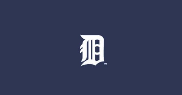 8 inch Detroit lions felt in polyester