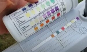 Mercury testing strips for pool water